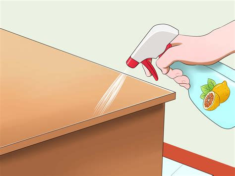 how to stop cats jumping on kitchen bench 3 ways to prevent cats from jumping on counters wikihow