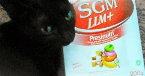 Sgm Llm Untuk Kucing Anggie Anotherlife Review Dan Curhat Sgm Llm