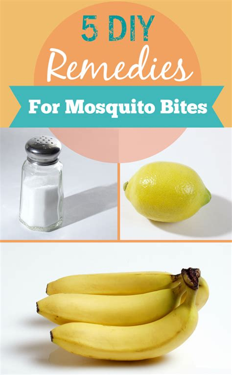 5 diy remedies for mosquito bites