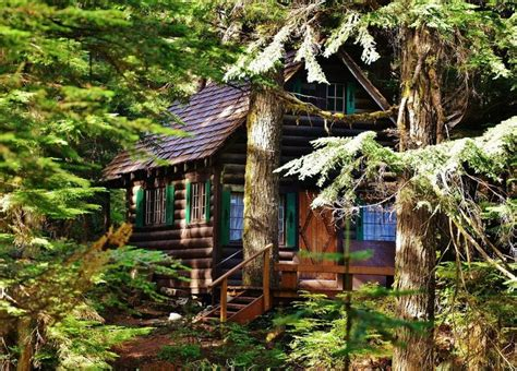 a small log cabin in washington state beautiful and