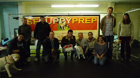sf puppy prep shelly leong peterson bright lights