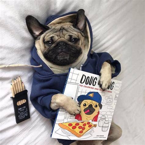 enlightened pugs coloring book books doug the pug on quot the coloring book u been