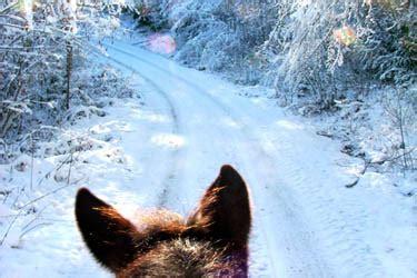 jura randos dans la neige et weekends dans le massif du