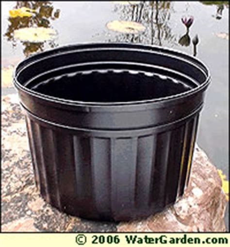 Planters Without Holes by Water Garden Tips Potting Aquatic Plants Choosing Soil And Pots