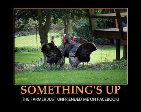 Funny Thanksgiving Meme - 12 really hilarious and funny turkey thanksgiving memes