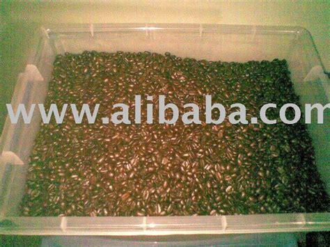 Kopi Gayo Luwak Liar Arabica Roasted 200gr roasted coffee arabica aceh gayo products indonesia roasted coffee arabica aceh gayo supplier