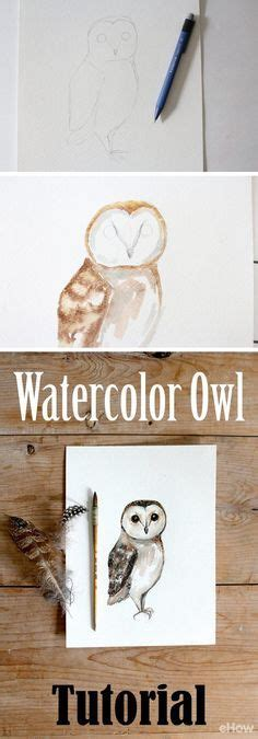 watercolor owl tutorial watercolor owl images wildlife art prints plus original