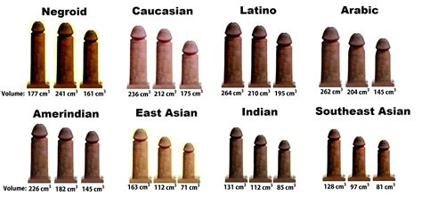 penis long world size images penis size per country pictures average penis volume by
