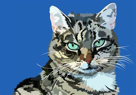 cat vector wallpaper wallpapers cats glance animals painting art vector graphics