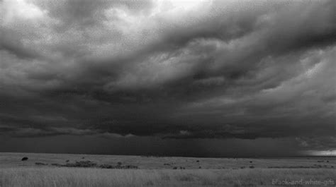 imagenes gif lluvia disfruta estos gifs de lluvia im 225 genes taringa