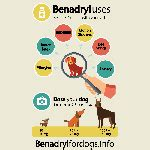 children s benadryl dosage for dogs where to buy benadryl for dogs in australia reviews directory