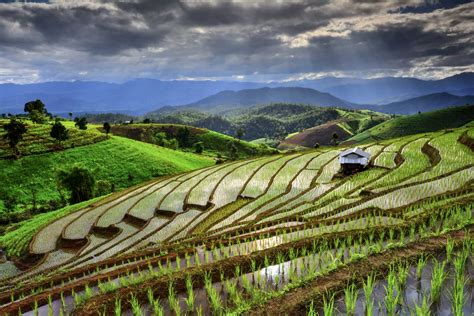 The Best of Northern Thailand   A&F Tour Travel Co.