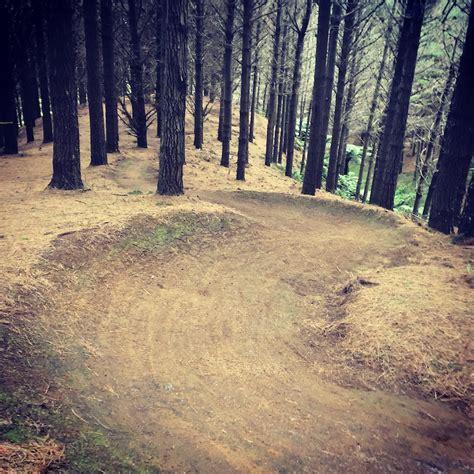 Mountain Bike Raglan te ara k艨k艨riki raglan mountain bike trails trailforks