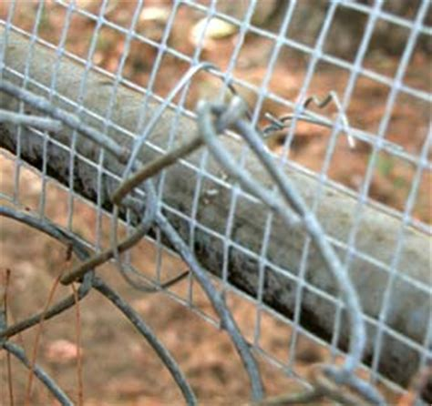 how to keep dog from jumping fence unchain your dog org extend height of fence make fence