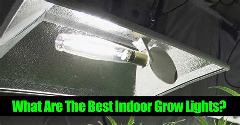 Growing Lights by What Are The Best Indoor Grow Lights