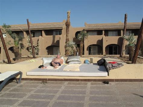 pool beds lunch terrace and pool picture of clubhotel riu tikida palmeraie marrakech