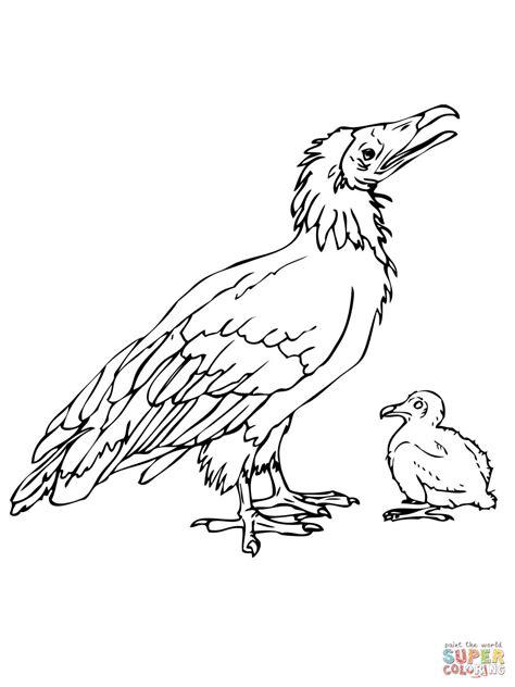 coloring pages of dodo birds dodo bird coloring pages coloring pages