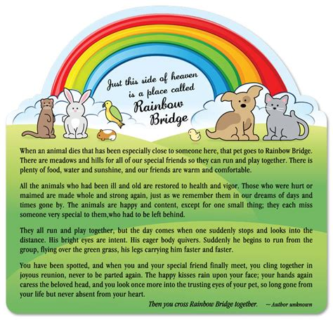 rainbow bridge poem for dogs rainbow prayer for dogs related keywords rainbow prayer for dogs keywords