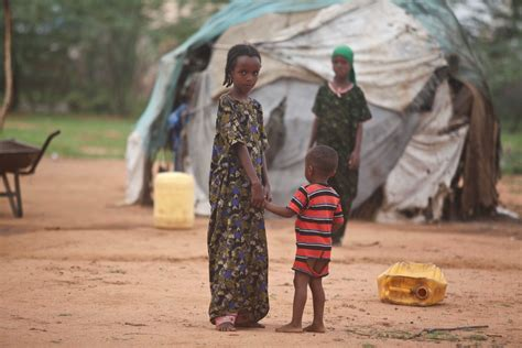 a breed apart reflections of a refugee books kenya humanitarian aid must be prioritised in dadaab