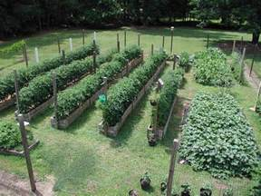 How To Layout A Vegetable Garden Best 10 Vegetable Garden Layouts Ideas On Garden Layouts Raised Beds And Growing