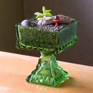 miniature garden ideas for black thumbs part ii the