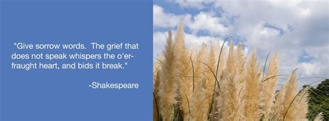 clinical handbook of bereavement and grief reactions current clinical psychiatry books grief counseling