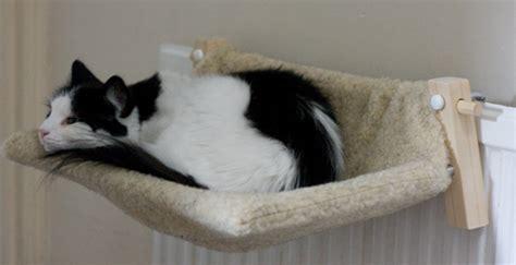 Cat Hammock Radiator october giveaway the radpet cat hammock a superior