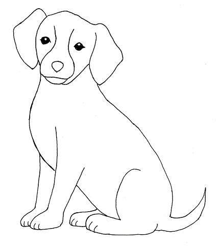 how to draw a puppy drawing step by step bell