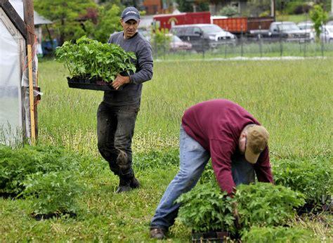 garden city harvest celebrates 20th anniversary with big