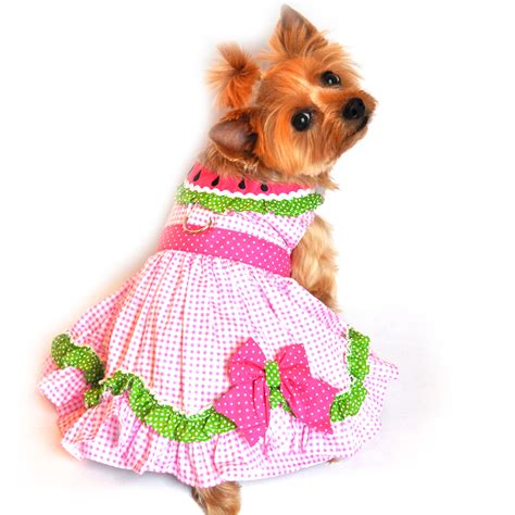 watermelon for dogs watermelon harness dress by doggie design baxterboo