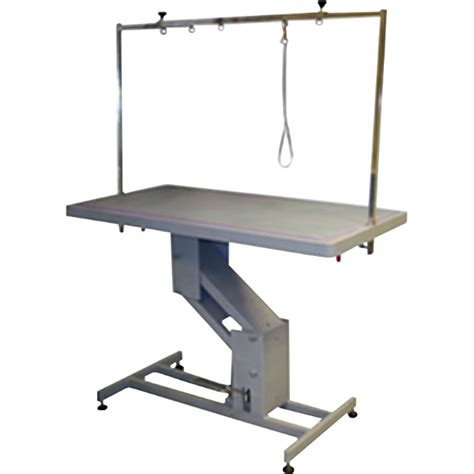 Hydraulic Table by Deluxe Professional Hydraulic Grooming Table Rjft 804l