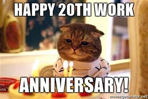 20th Birthday Meme - happy 20th work anniversary birthday cat meme generator