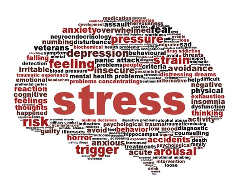 Brain Stress - stress management alan fitness personal trainer and