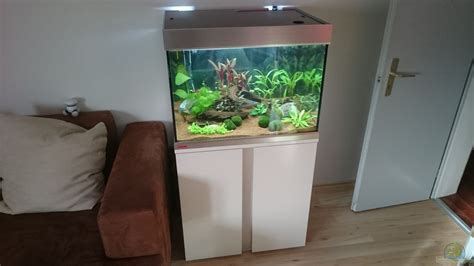 aquarien schrank exle no 32505 from the category community tanks