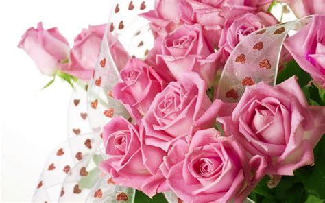 pretty pink roses roses wallpaper 34610944 fanpop