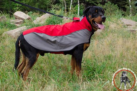winter coats for rottweilers indispensable winter coat padded outdoor high quality rottweiler wear h14 1018
