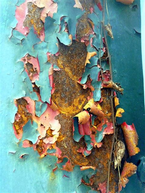 acrylic paint peeling canvas curled peeling paint photograph by carla parris