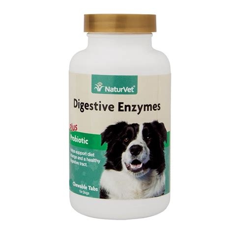 digestive enzymes for dogs naturvet digestive enzymes with probiotics cat tablets 90 count