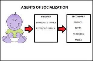 agents political socialization essay