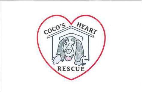 coco s rescue coco s rescue chdogrescue