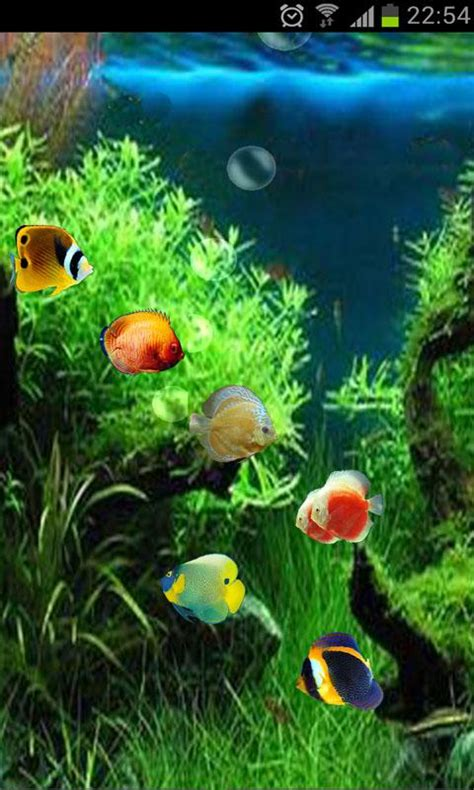 fish tank   wallpaper android apps games