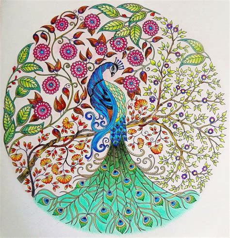 secret garden coloring book peacock 25 best coloring books pages for adults to relieve