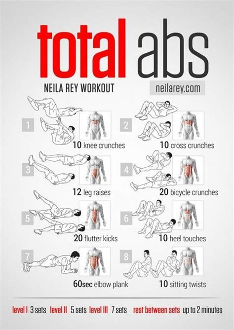 best 25 abs workout routines ideas on
