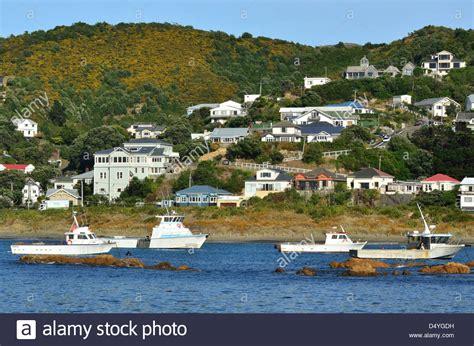 fishing boats in island bay in wellington new zealand - Wellington Nz Fishing Boats