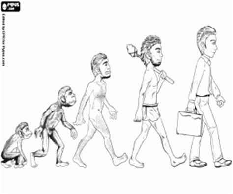 human evolution coloring book human evolution and archaeology coloring pages printable