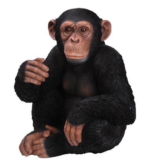 Siting chimpanzee sitting real life ornament by vivid arts