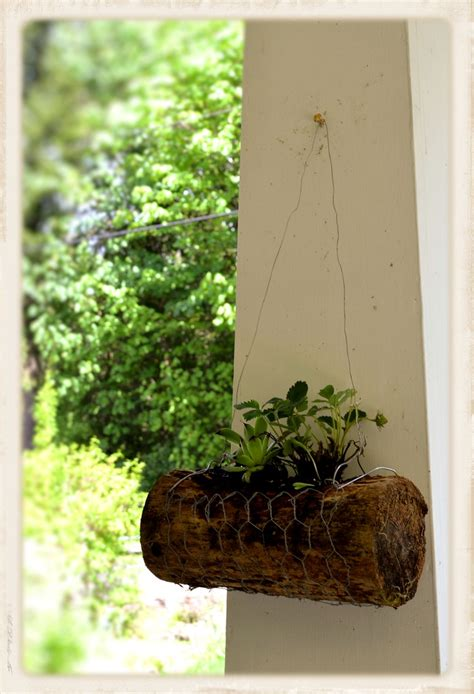Half Hanging Planters by Pin By Jackson On Diy