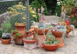 Potted Garden Ideas Sensational 5 Gardening Ideas Trendy Mods