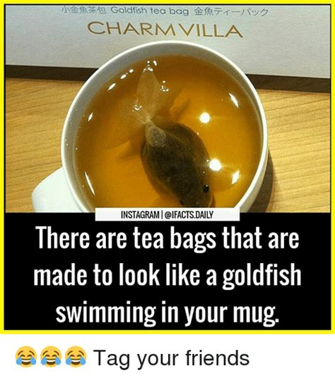 Tea Bag Meme - 25 best memes about tea bagging tea bagging memes