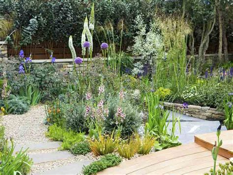 Garden Saga by What Happens To The Plants After The Chelsea Flower Show Saga